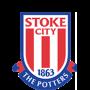 Stoke City crest image